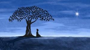 Thai Massage Bai Pho Bodhi Bhudda
