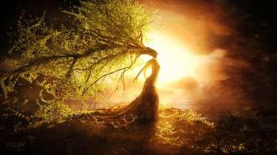 7387-fantasy-tree-wizard-hd-wallpaper