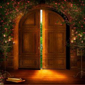 Les portes souhaits l 39 alchimie des mots for Porte qui s ouvre